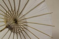 Paper Umbrella, Wedding & Function - Super Floral Distributors - Decor, Floral accessories and Crafters accessories in Cape Town