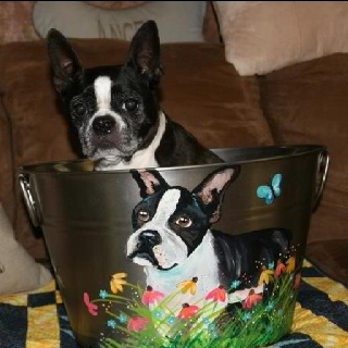 Fun beverage tub I painted for the Nebraska Boston Terrier Rescue...this is the winner!