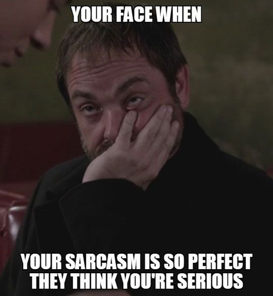 I can speak fluent sarcasm and have a knack for a bone dry sense of humor... sorry 'bout that :/