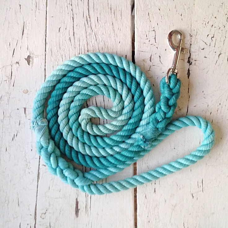 Ombre Dog LeashAqua and Teal (With images) Dog leash
