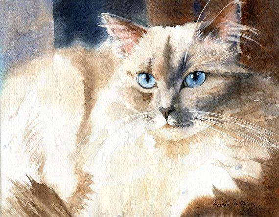 Mon Ragdoll aquarelle de Rachel Parker Irmo, Caroline du Sud, États-Unis