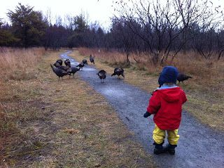 Outdoor Trails that are good for kids