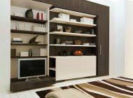CLEI bookcase and TV unit that doubles as a contemporary murphy bed