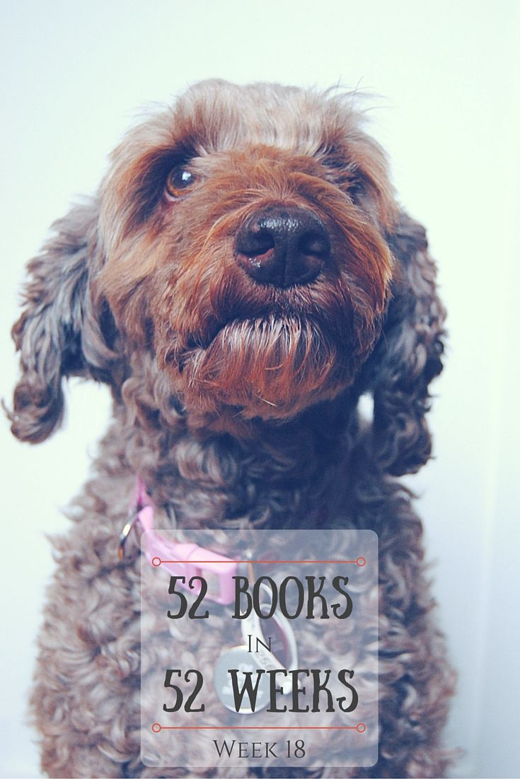 Are you feeling the call of the wild? Week 18 of my 52 Books in 52 Weeks challenge is here (starring my dog, Coco)!