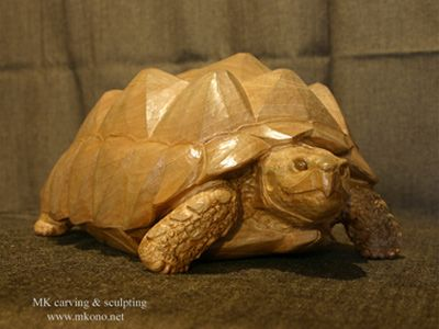 tortoise woodcarving 1