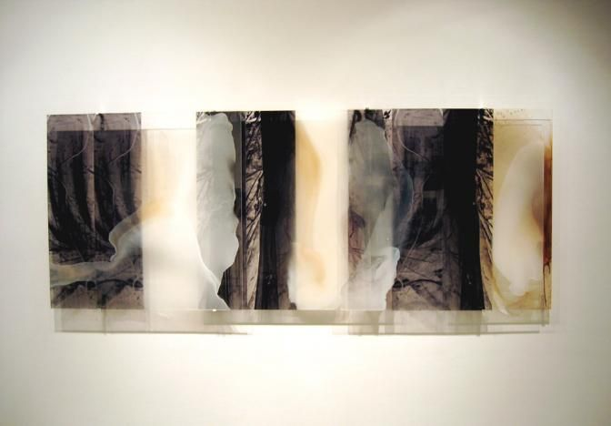 Selva Veils « Janet Laurence