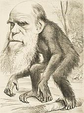 혁명을 비판하고 풍자하는 회화: <다윈 풍자 만화> 본래 영국은 유럽 중 회화가 뒤떨어지는 편이지만, 풍자 미술에 우수했다. 로코코 시대에는 윌리엄 호가스가 있었고, 그 유명한 만평 잡지 펀치도 영국 잡지였다. 혁명과 관련해서는 이 그림이 유명하다. 과학에서 혁명을 이룬 근대에 진화론을 주장한 다윈을 원숭이로 조롱한 유명한 그림이다. 종교계, 보수계의 반박으로 생긴 풍자화라는 점이 일반적으로 떠올릴 수 있는 풍자화와 차이점이 있다.