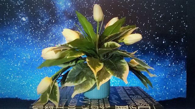 Kwiatorium