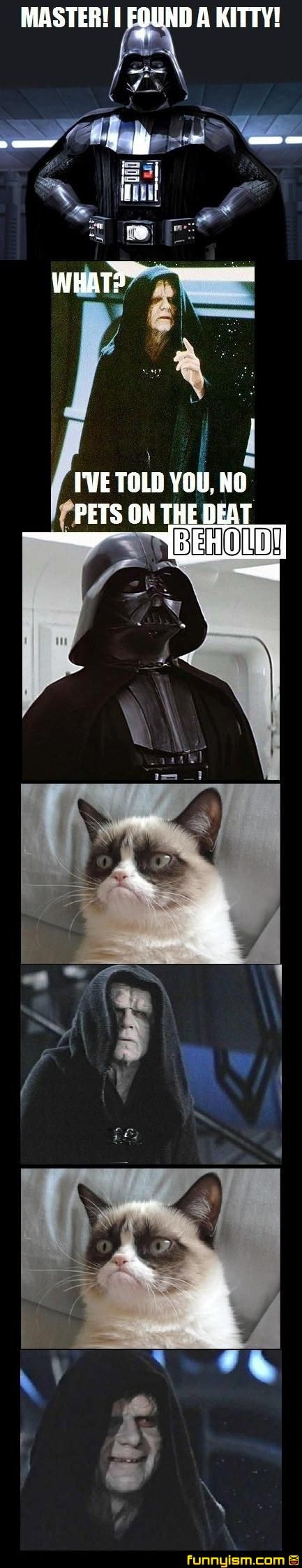 grumpy cat on the death star