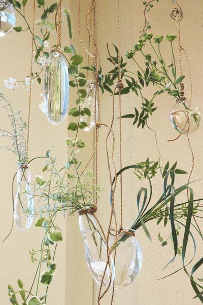 FAVE Indoor plants