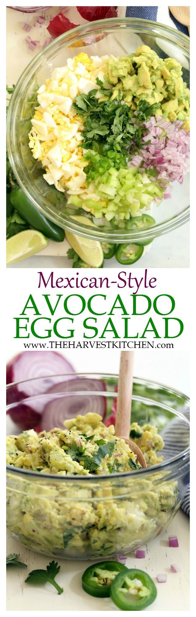 This Mexican Style Avocado Egg Salad is a little like guacamole meets egg salad minus the mayo. It's made with avocado, celery, purple onion, cilantro, jalapeño and lime juice. Super simple and super delicious! No mayo! | skinny egg salad recipe | | clean eating | | healthy recipes | | avocado egg salad | | low fat egg salad