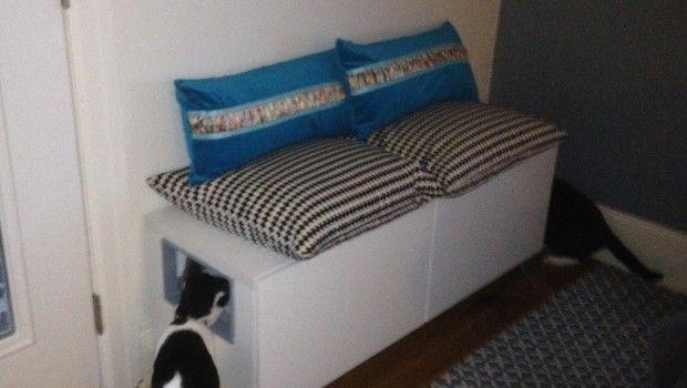 versteckte Katzentoilette