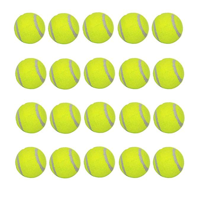 Luckyermore Dog Tennis Balls 20 Pack Pet Tennis Ball For Small Dogs Premium Fetch Toy Non Toxic Non Abrasive Material 2 Inc Small Puppies Fetch Toy Tennis Ball