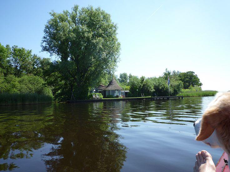 Bootje varen. Gisteren hebben we heerlijk op het water doorgebracht. Honden, picknickmand en wijn mee. Weblog Marion Pannekoek sieraadontwerper | edelsmid