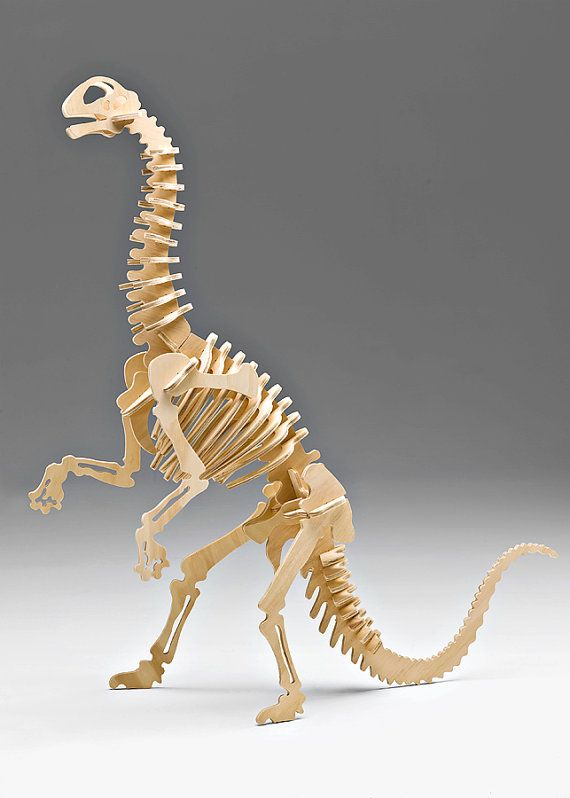 Bag Of Bones Medium Jobaria Dinosaur Large Scale 3 D