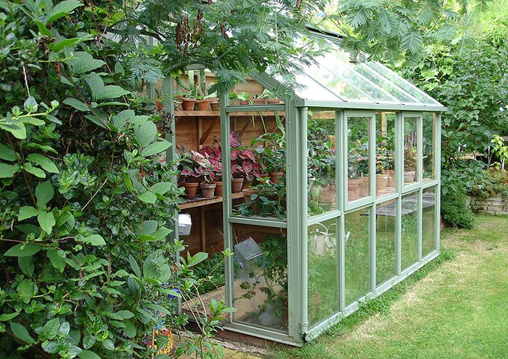 Small Greenhouse - this is exactly what I want on the south side of the garage (once that pesky boxelder tree finally kicks it...)