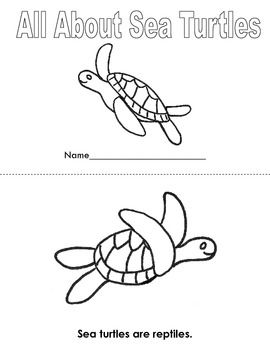 All About Sea Turtles Read and Color Book
