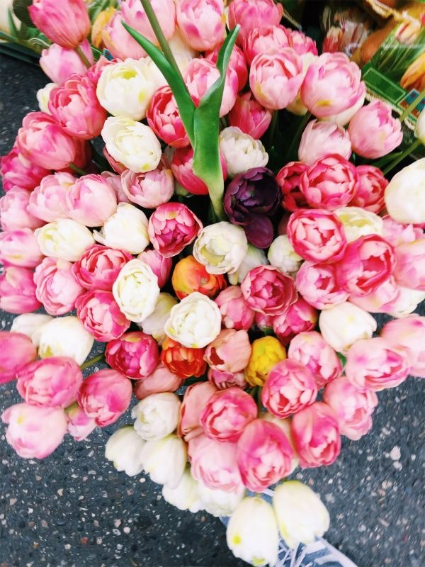 Image result for Tulips and Roses pinterest