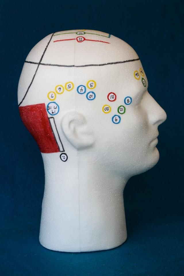 Access Bars 32 point Head Photo   P2 Vibrational Alignment Center - Relieve stress, Rejuvenate & Realign your body back to it's natural, healthy, holistic state. #vibrational_energy_healing #vibrationalenergyhealing