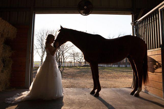 Beautiful and dramatic Bridal Photo with a horse.
