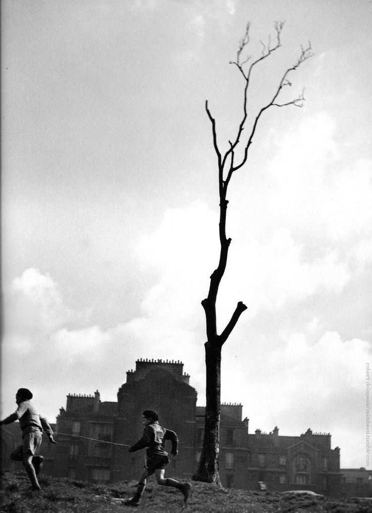 The tree Paris 1930s Robert Doisneau