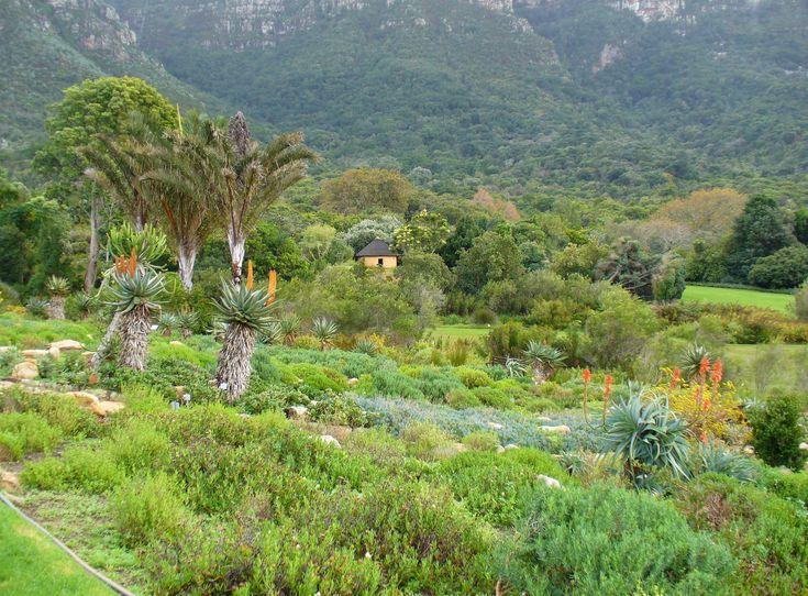 View_Kirstenbosch_Gardens.JPG
