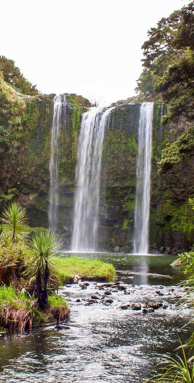 Whangarei falls, Tikipunga, New Zealand