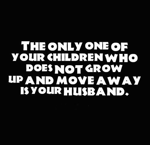 25+ Best Funny Husband Quotes On Pinterest