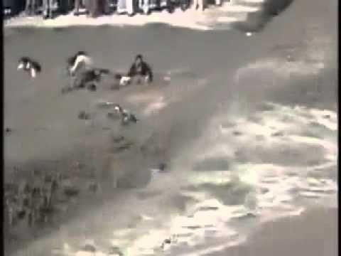 Man Who Escaped from Tsunami