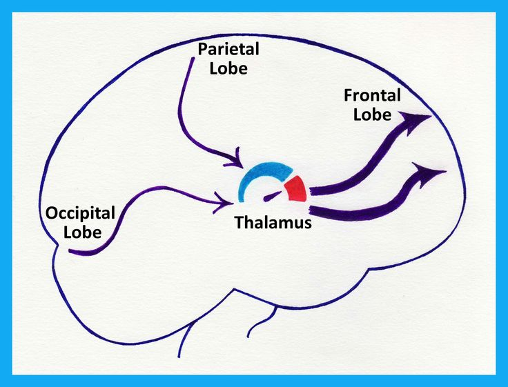 When we have low levels of dopamine, we experience all our senses at a higher volume. People with ADHD sometimes experience their environment very differently to those around them.