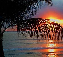 Bali Summer Sunset Surf by designzbyjamz