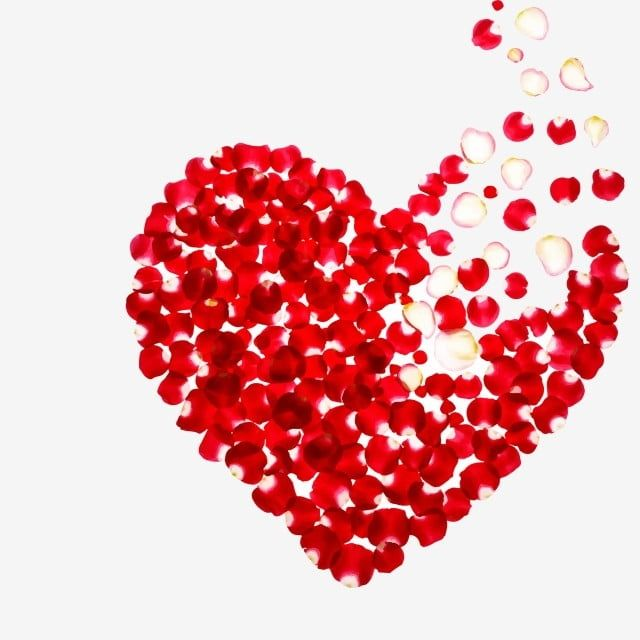 Valentines Day Lover Rose Petal Heart Shape Composed Of Rose Petals Heart Outline Valentine Love Romantic Beauty Png And Vector With Transparent Background F Valentine Clipart Heart Shaped Valentines Valentine Heart
