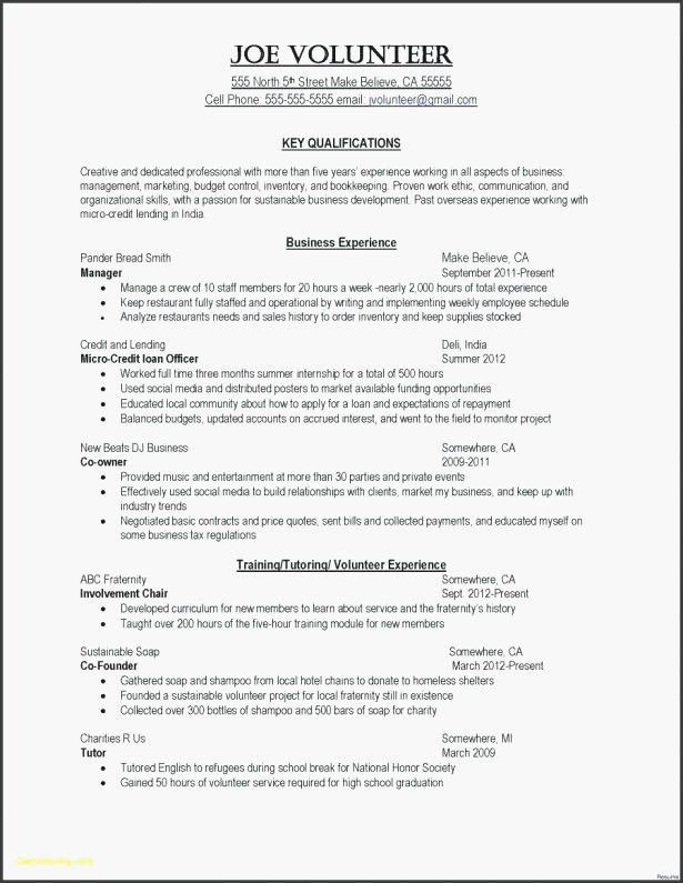 80 Unique Photos Of Resume Examples Highlights Of Qualifications