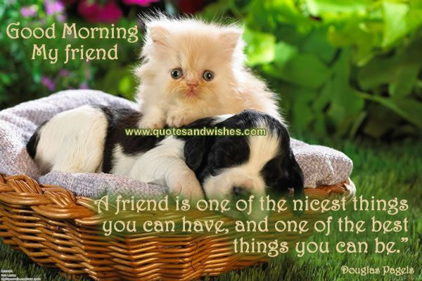 Good Morning My Beautiful Friend Quotes: Good Morning Greetings For Friends