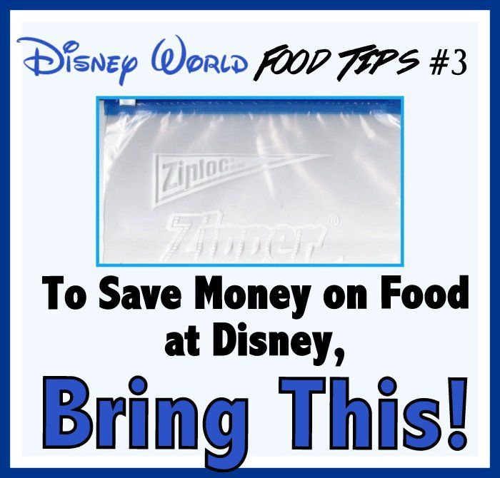 Why you should always have a couple Ziplock bags with you when visiting Walt Disney World
