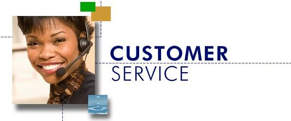 Work from home providing excellent customer service to a variety - excellent customer service
