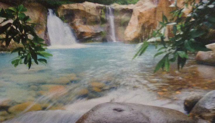 Rincon de la vieja volcano national park Cost Rica
