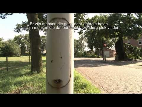 Den Heilige Eik - een animatie-documentaire in opdracht van Schatten van Brabant