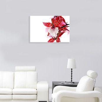 #Obrazy na #płótnie W trzech rozmiarach. Druk najwyższej jakości na bawełnianym płótnie canvas. Zobacz na http://bit.ly/1QYzDRH #płótno   #obraz   #wydruk   #ozdoba   #prezent   #dekoracja   #storczyk