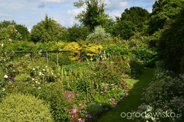 Goodnestone Park Gardens - Anglia - strona 4 - Forum ogrodnicze - Ogrodowisko