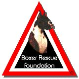 Lonestar Boxer Rescue!  Please help these wonderful dogs find homes.  Boxers are the best breed, loving, kind, family oriented and very protective if they love you.