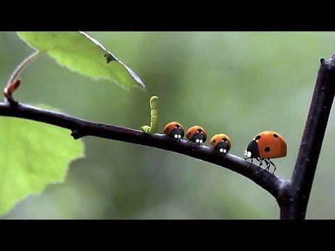 WATCH (*≗*) :::▶ Minuscule - La vallée des fourmis perdues(2014) free mo...