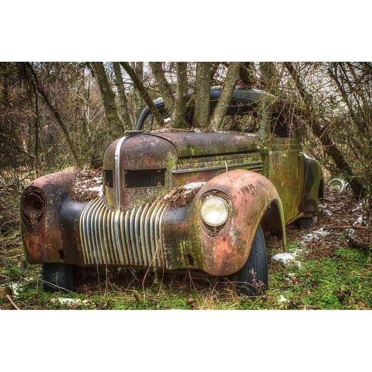 """Woods in the Car"" by Glenn Martin, Canvas Giclee Wall Art Print"