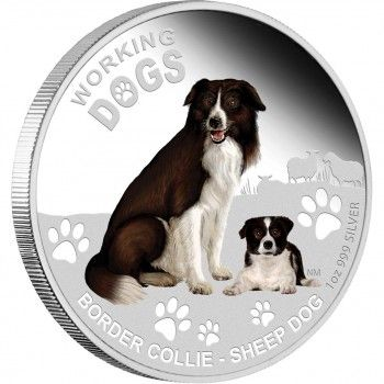 2011 WORKING DOGS SERIES 1OZ SILVER PROOF COIN - BORDER COLLIE