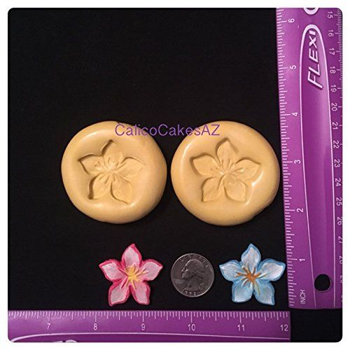 Tropical Flower Fondant Mold Set Gumpaste. 2 Tropical Flower Molds Molds will work the best with Fondant or gumpaste. Chocolate is not recommended, as the details may not come across. Poppy Paint on your fondant/gumpaste will enhance details. • Handmade item • Material: Silicone mold • Made to order ALL molds are FOOD SAFE! Non Toxic Complies with FDA 21 CFR 177 2600 Food Use for Molds: Fondant, gumpaste. All molds are made by me when you order. If you are using this for food, use it ONLY...