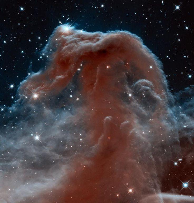 馬頭星雲の内部をとらえた、きわめて精細な赤外線画像。ハッブル望遠鏡の広視野カメラ3で撮影した。この星雲は古くから多くの天文学者によって観測されてきたが、背景が明るく輝いているために、これまでは明るい背景との対比でもっぱら暗くしか見えなかった。ハッブル望遠鏡は、星間を漂う塵やガスのとばりに包まれたこの天体の素顔を明らかにしてみせた。 4点の画像をモザイク合成した。NASA; ESA; HUBBLE HERITAGE TEAM, STSCI/AURA