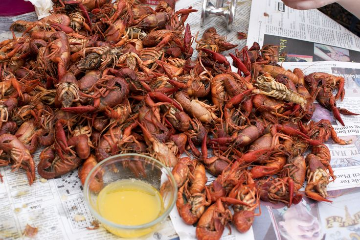 Crawfish, crayfish, mudbugs, crawdads - a How-To for first timers