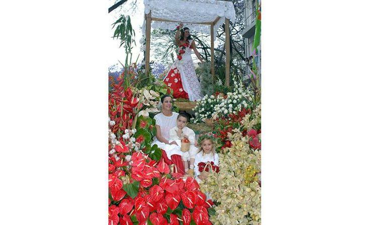Madeira Flower Festival #FlowerFestival