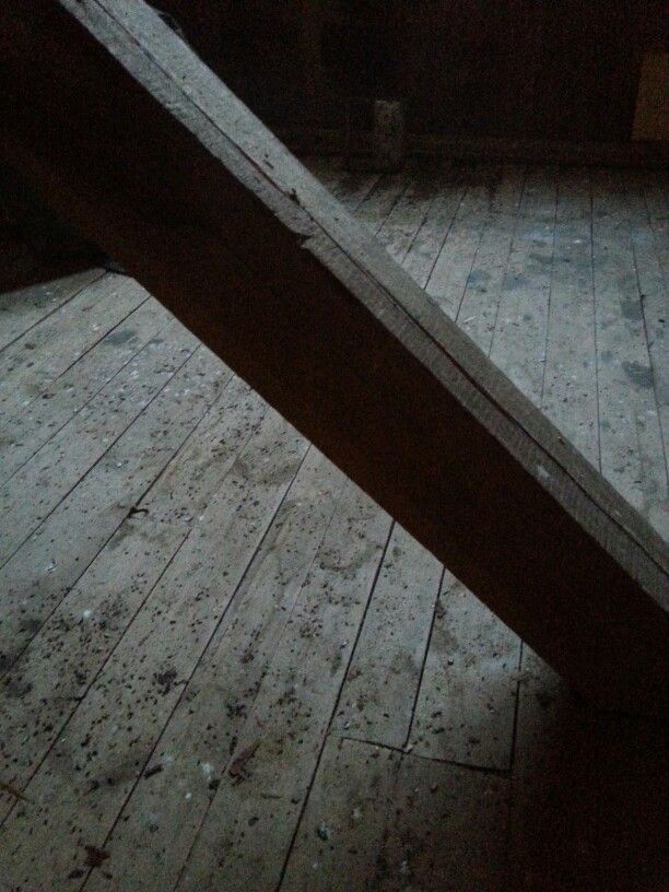 Attic Photo Pirjo Pesonen