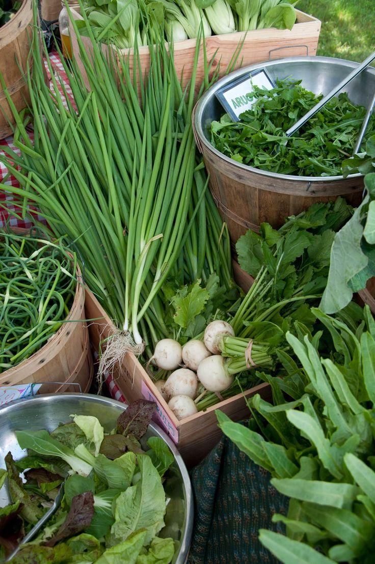 Kitchen Garden Farm 17 Best Images About Pottage Garden On Pinterest Gardens Raised